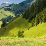 (cc) Katell Ar Gow - Et au loin les vaches